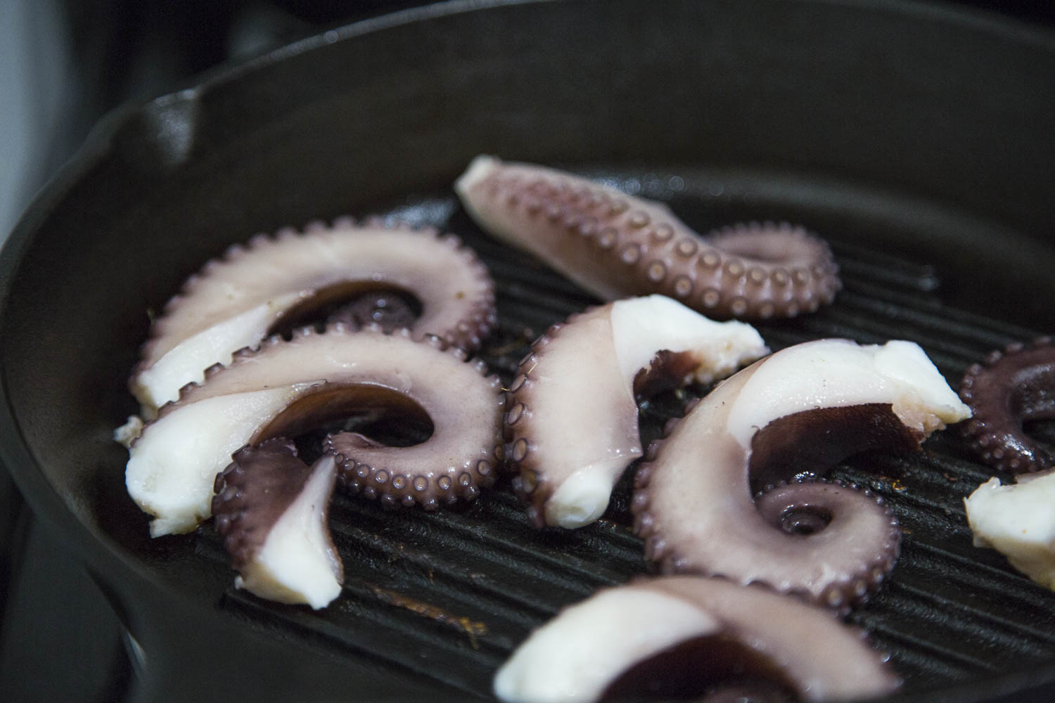 Octopus ready to grill